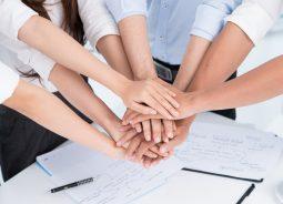 iFood usa SAP Ariba para aprimorar gestão de fornecedores