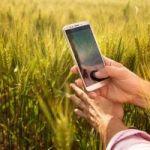 Aplicativo permite controle da lavoura via satélite