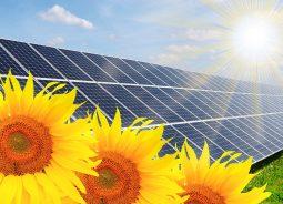 MG recebe usina solar fotovoltaica para atender a empresas