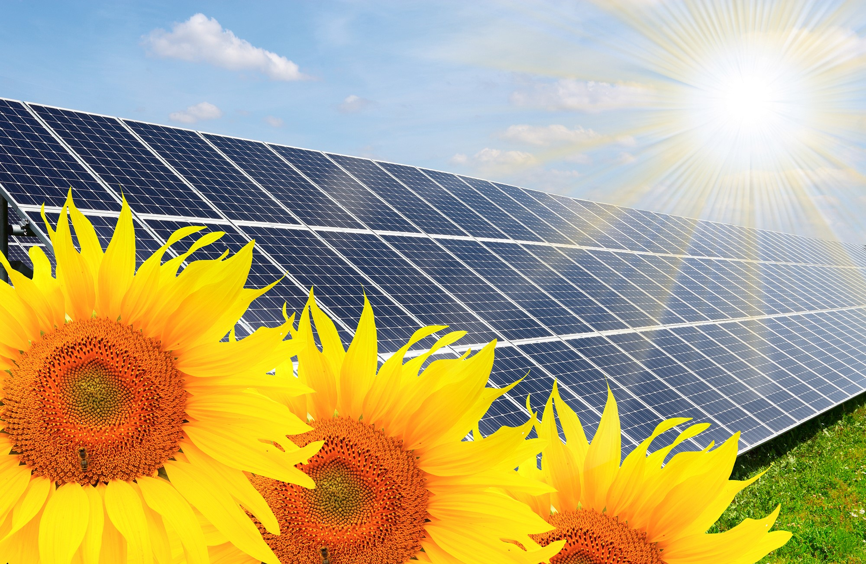 Huawei é escolhida para projeto da Usina Solar em larga escala do Brasil