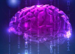 CEO da Microsoft reforça o potencial da IA para impulsionar a competitividade