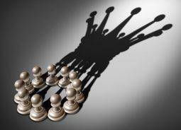 Rede colaborativa reduz impacto do Fisco