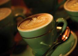 Armazém Inteligente 4.0 da Agrotopus eleva eficiência em Armazéns Gerais de Café