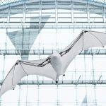 Morcego e Aranha: novas inspirações do projeto Bionic da Festo