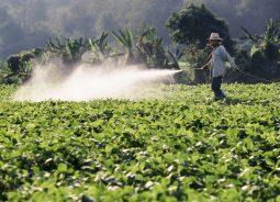Sankhya anuncia parceria com GAtec e reforça atuação no agronegócio