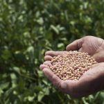 Grandes empresas desenvolvem ofertas de IoT para o agronegócio