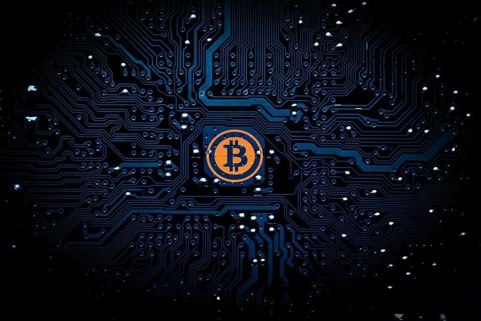 Internacionalização: Omnitrade é a  1ª exchange de criptomoedas brasileira a operar no exterior