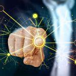 Unimed Vitória automatiza processos e aumenta controle de dados com SoftExpert
