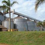 Ceifasul implementa ferramenta de gestão logística e otimiza operações no transbordo de grãos