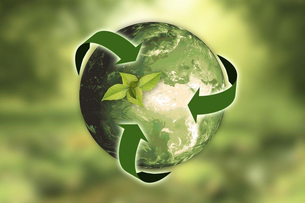 Infosys torna-se neutra em carbono