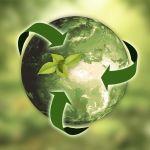 A sustentabilidade como diferencial competitivo nos negócios