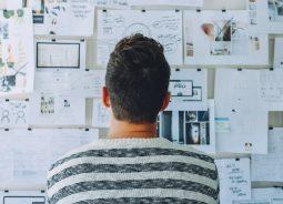 Empreendedorismo: curso gratuito no EAD do Programa Conecta Startup Brasil