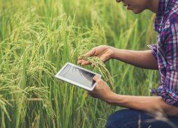 Infosys prevê aumento da adoção de tecnologia de ponta na gestão agrícola